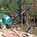 Naturnær driftsteknik modul 2A og B