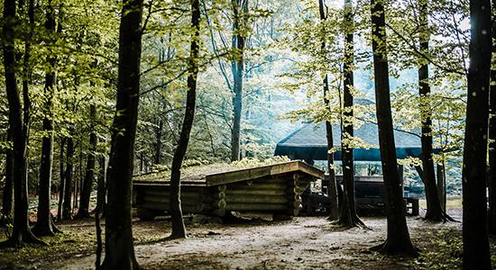 Shelterpladsen på Skovskolen