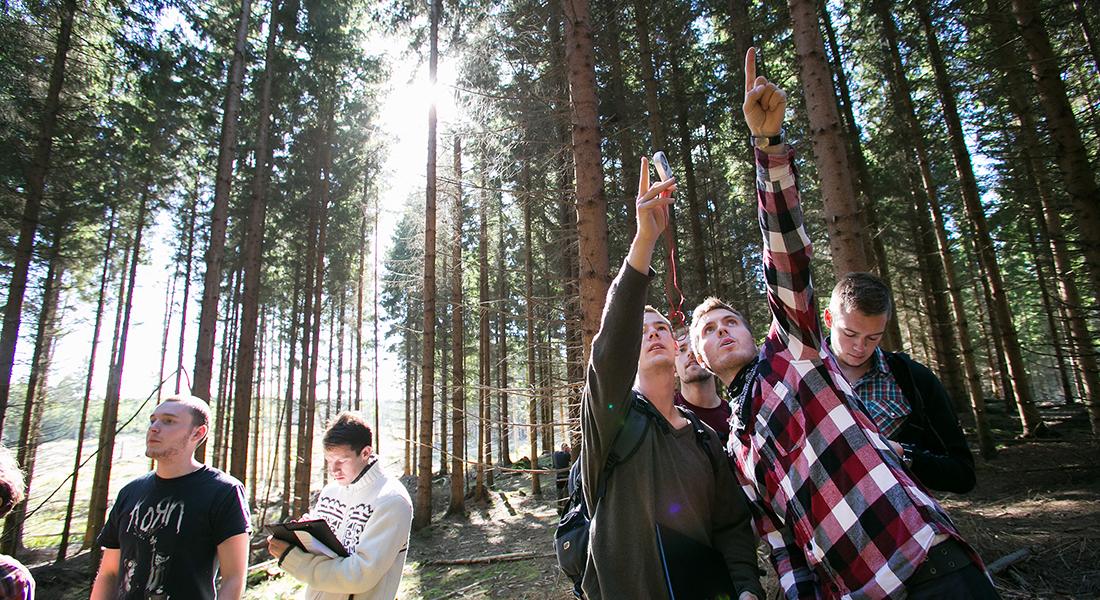 Praktikant fra Skovskolen